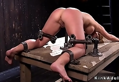 Busty in bondage with box on a head